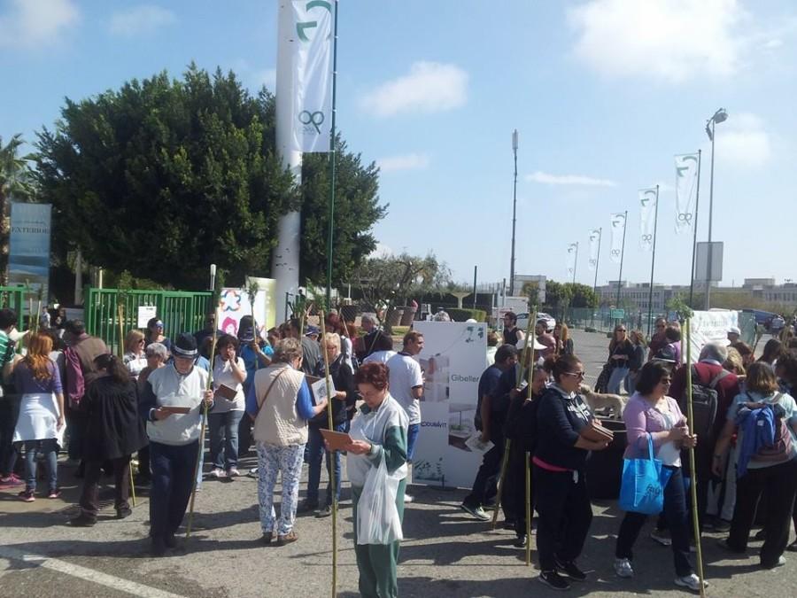 La ilusión de una tradición a las puertas de Gibeller en Santa Faz 2015