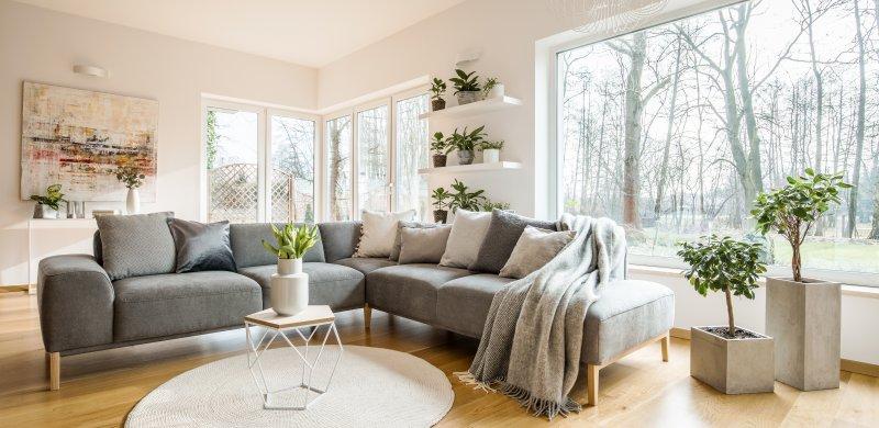 salón sofás y ventanas